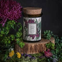 Botanica Candle | Dahlia & Black Amber-2
