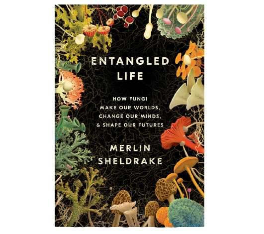 Entangled Life-1