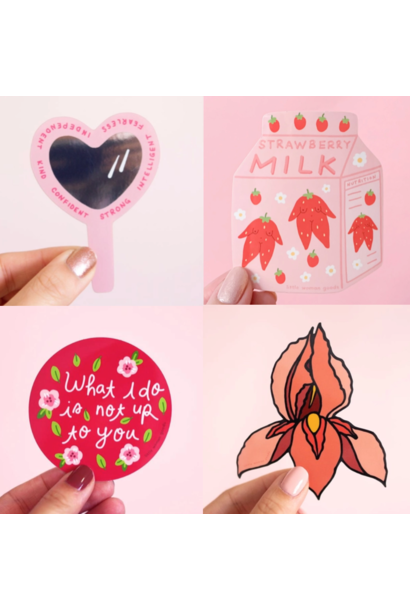Assorted Vinyl Stickers | Little Woman Goods