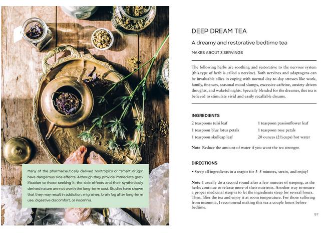 Adaptogens: Herbs for Longevity & Everyday Wellness   Adriana Ayales-3