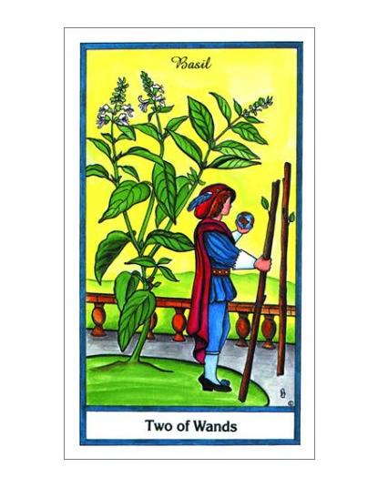 The Herbal Tarot Deck-3
