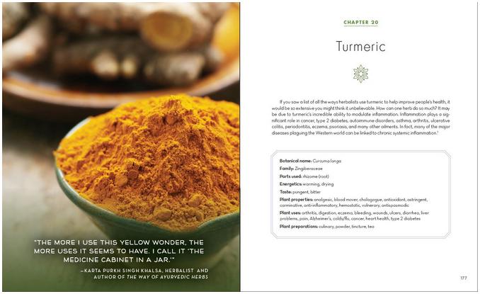 Alchemy of Herbs-4
