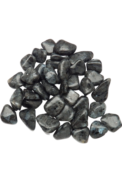 Tumbled Polished Stones | Larvikite