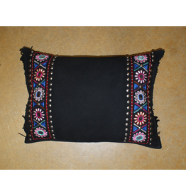 HOMEGOODS Double D Panchero Canyon Pillow