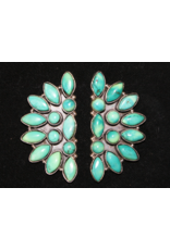jewelry Turquoise Half Moon Earrings by Rhed Lucy
