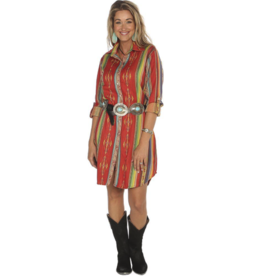 APPAREL Serape button down dress
