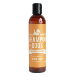 Black Sheep Black Sheep - Organic Shampoo - Mandarin & Orange