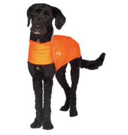 Chilly Dogs Chilly Dogs - Rain Slicker