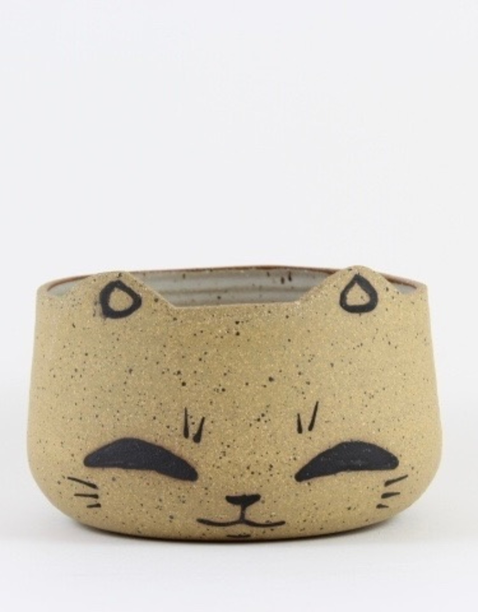 Tessa Reed Cat Head Planter by Tessaramics