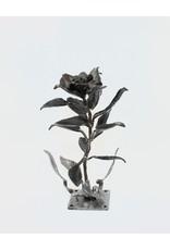 Richard Boudreau Black Rose by Richard Boudreau