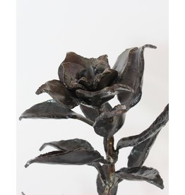 Richard Boudreau Black Rose by Richard Boudreau