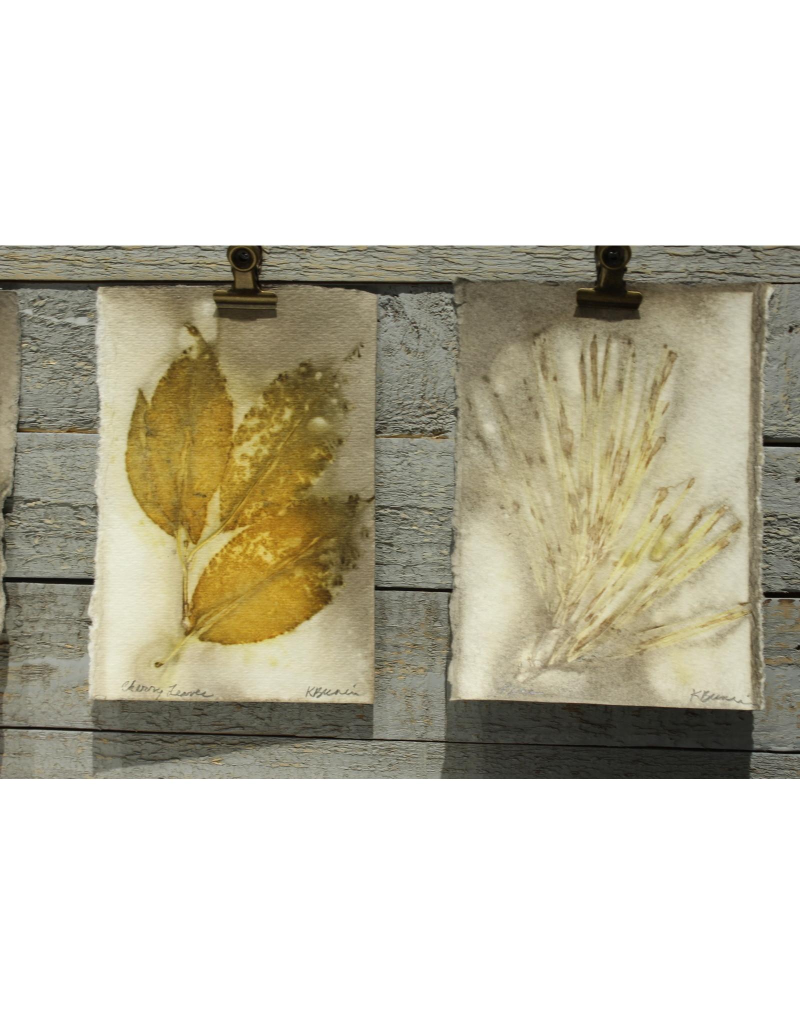 Kathleen Bunin Ecoprints by Kathleen Bunin