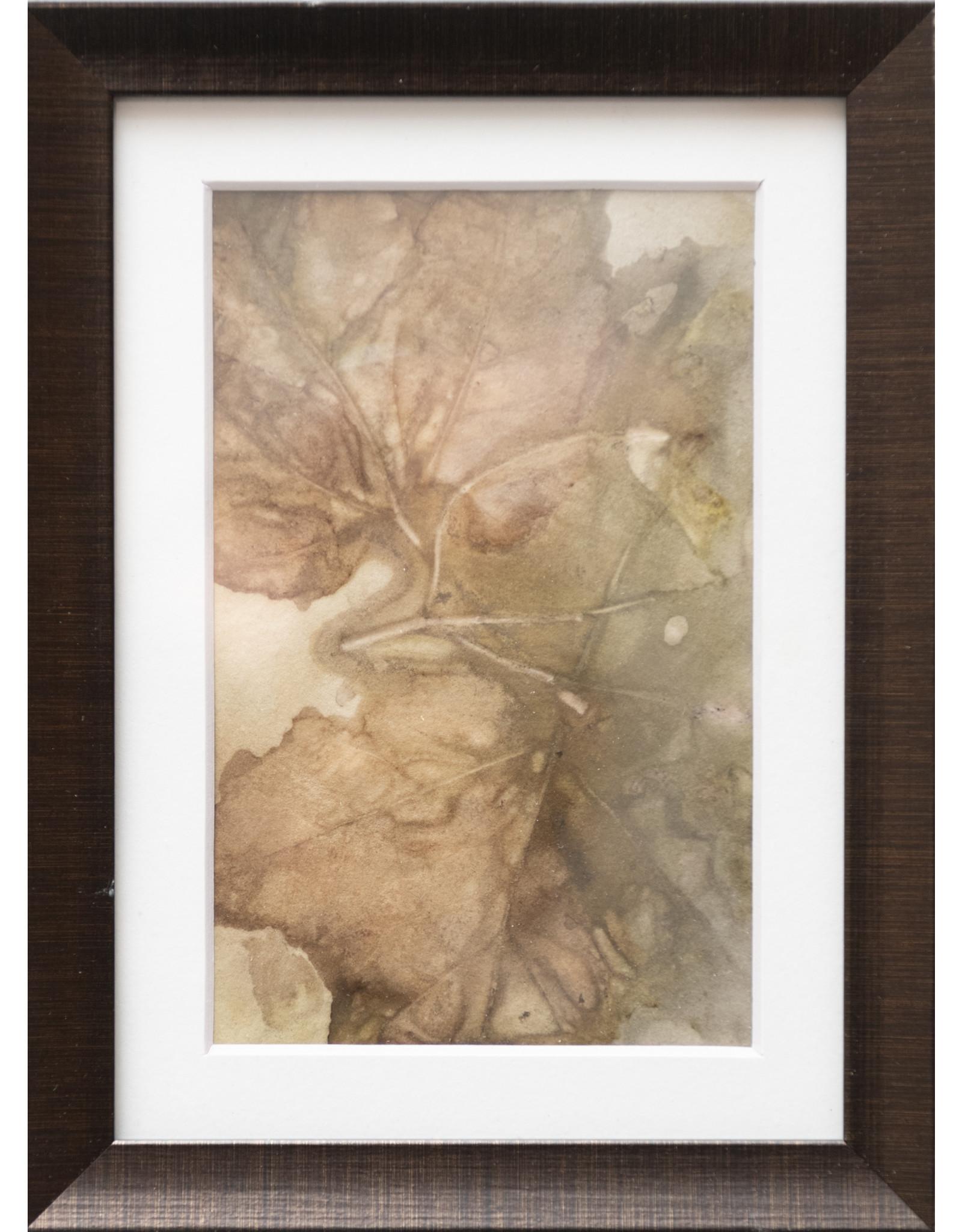 Kathleen Bunin Framed Botanical Prints (5x7) by Kathleen Bunin