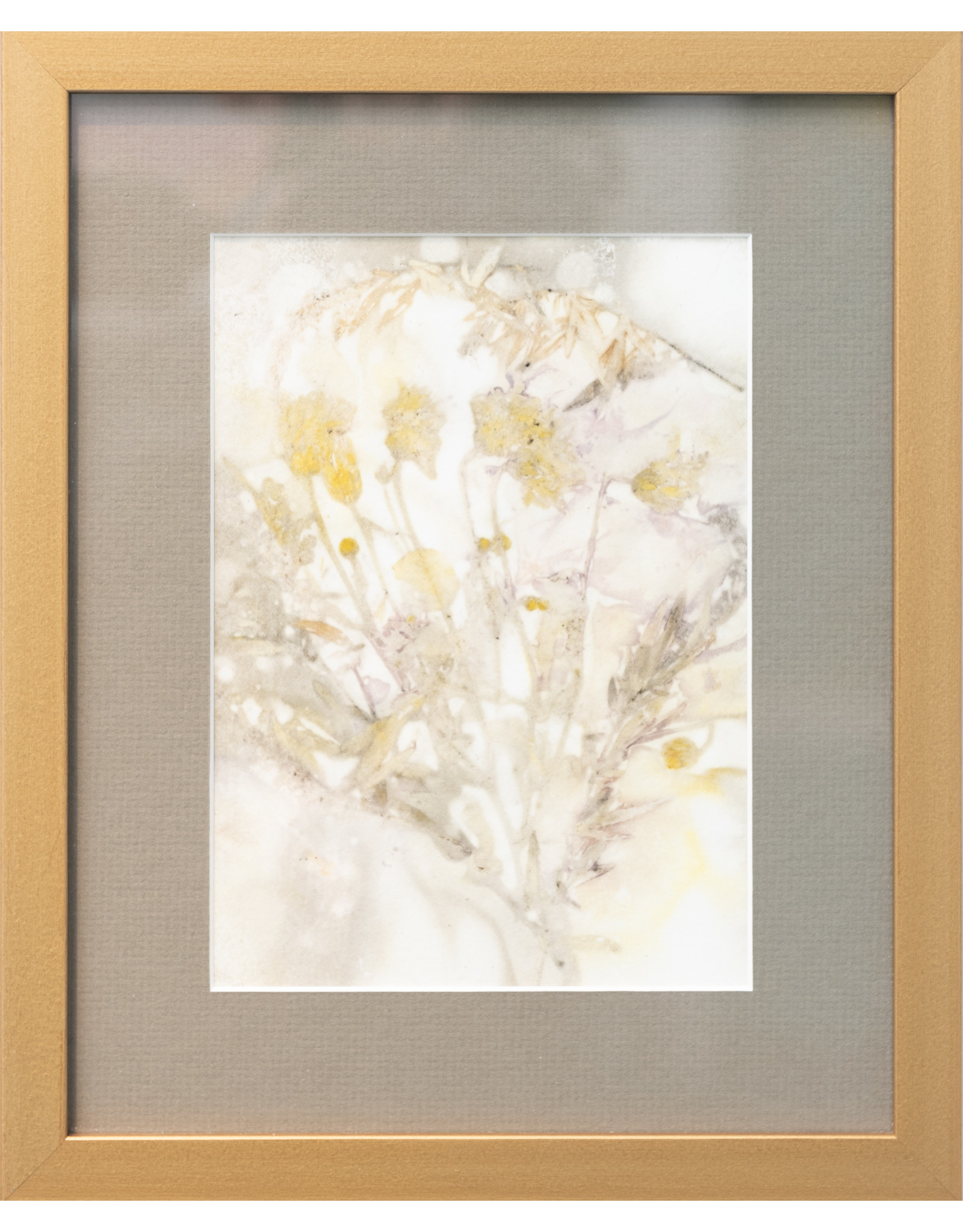 Kathleen Bunin Framed Botanical Prints (8x10) by Kathleen Bunin
