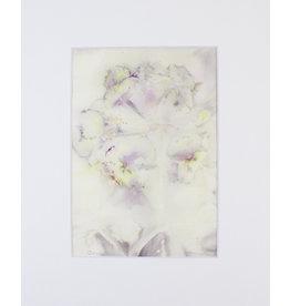 Kathleen Bunin Botanical Prints (Matted) by Kathleen Bunin