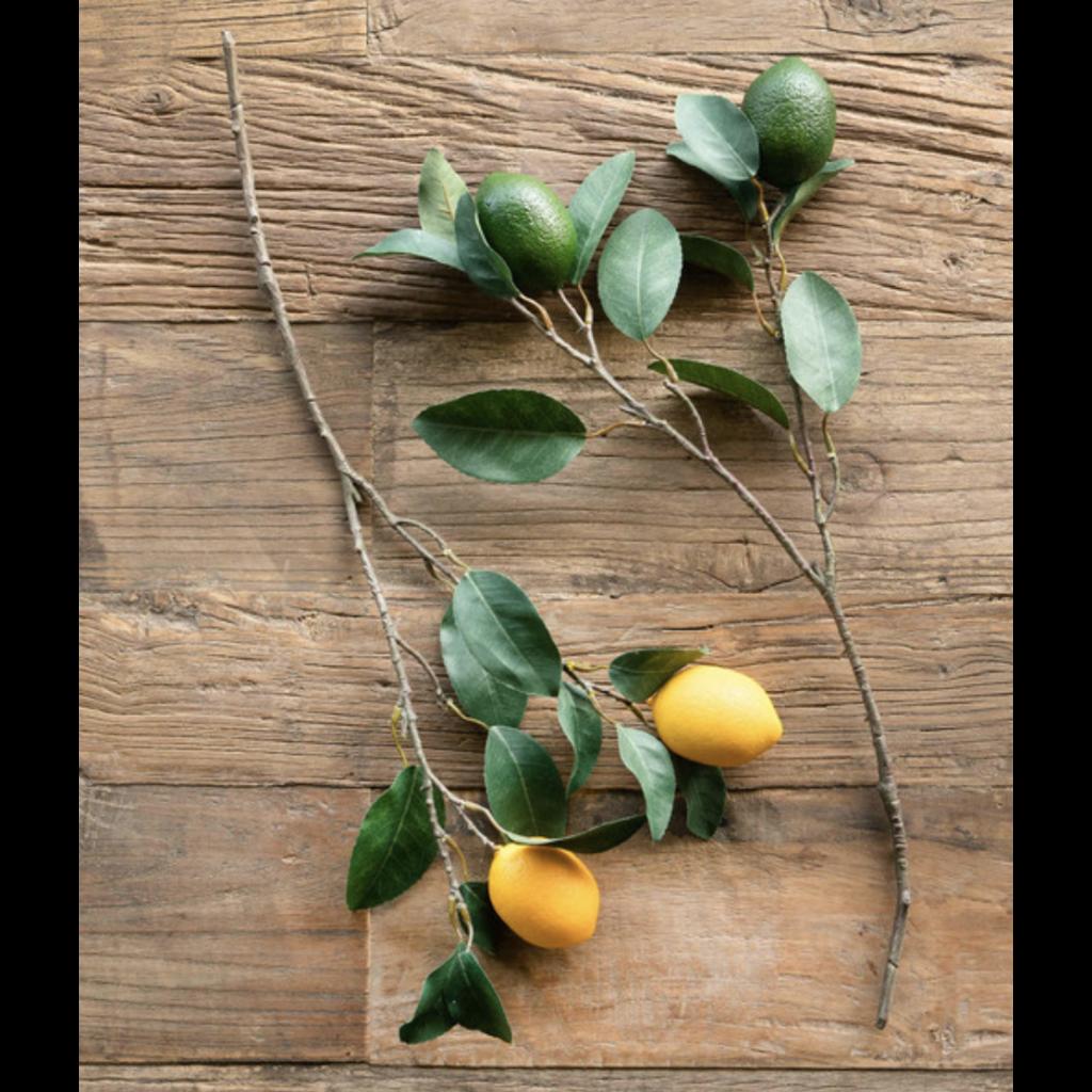 Park Hill Citrus Branch Lemon & Lime 2 asst styles