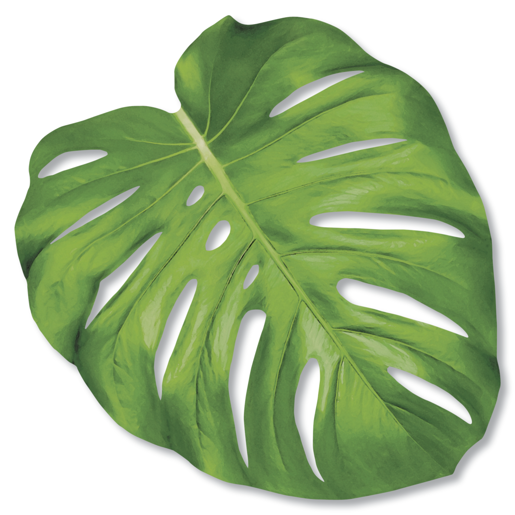 Hester and Cook Hester and Cook Die Cut Monstera Leaf Placemat - 12 Sheets