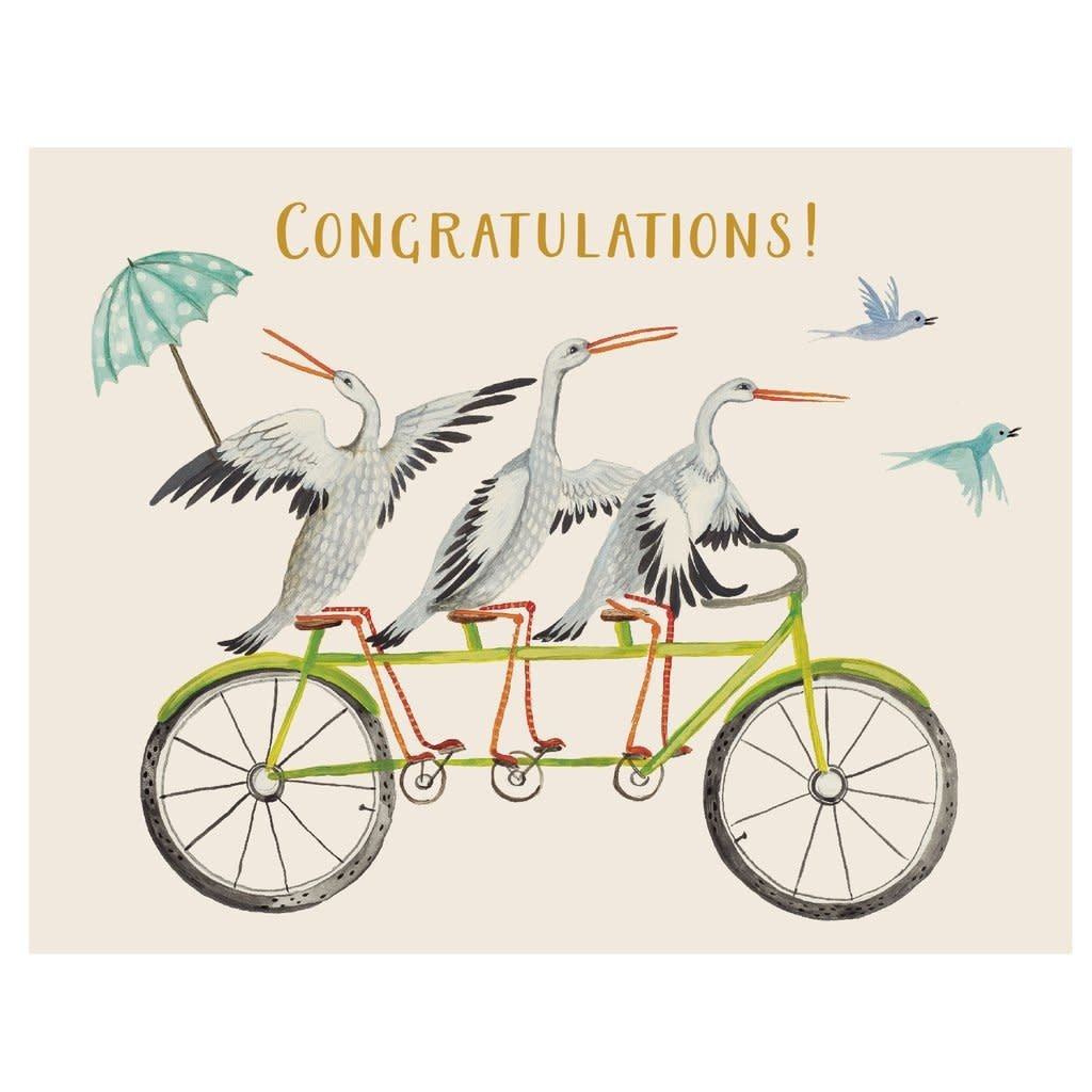 Hester and Cook Hester and Cook Congratulations Stork Trio Card