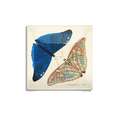 Ben's Garden BUTTERFLY PAIR, BLUE/ MULTl