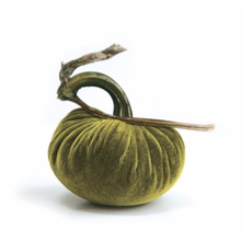 Plush Pumpkin Plush Pumpkins- Chartreuse 6''