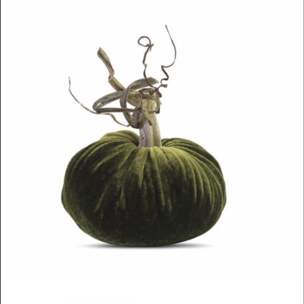 Plush Pumpkin Plush Pumpkins- Sage 10''