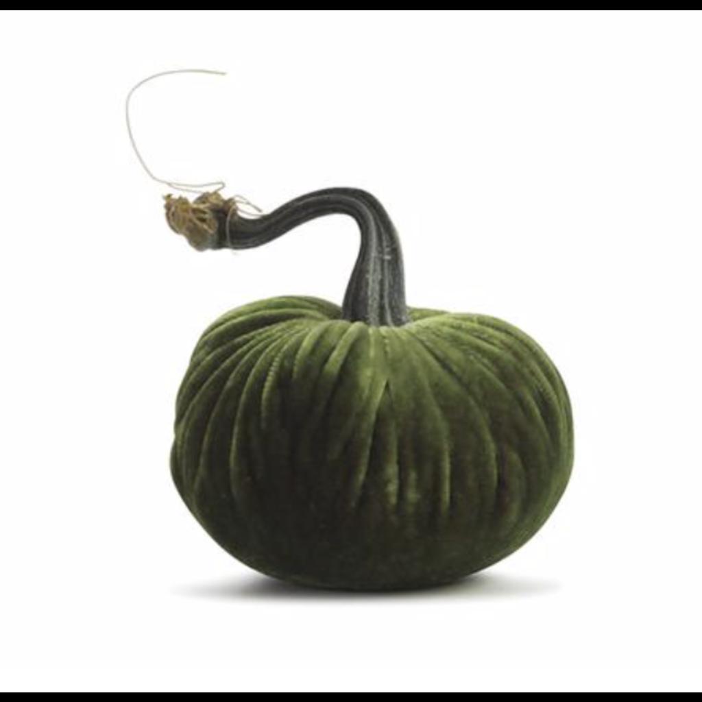 Plush Pumpkin Plush Pumpkins- Watermelon 4''