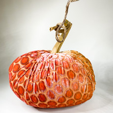 Plush Pumpkin Plush Pumpkins- Kevin Obrien: Pink/Gold Dot 8''
