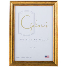 Galassi Gold 4x6 Frame