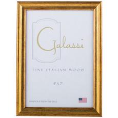 Galassi Gold 8x10 Frame