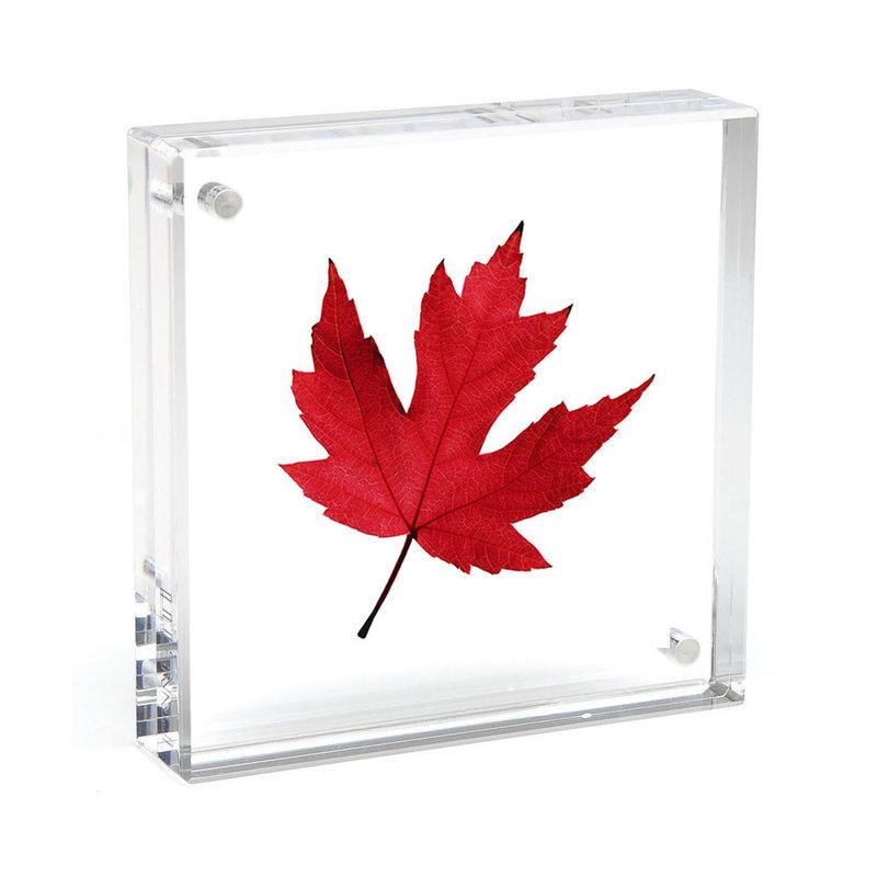 Canetti Original Magnet Frame 6 x 6