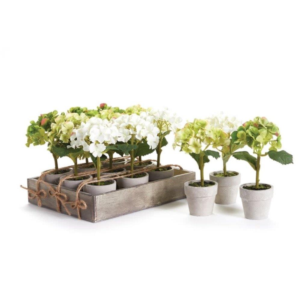 Napa Home and Garden 7'' Mini Hydrangea