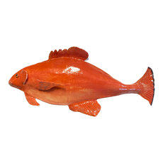 A Fishy Business Ceramic Hand Made Red Fish by Suzy Friedrichs