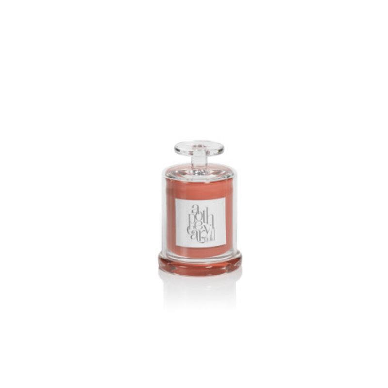Zodax AG Candle SM Jar w/ Cloche- Orange/Fig Vetiver
