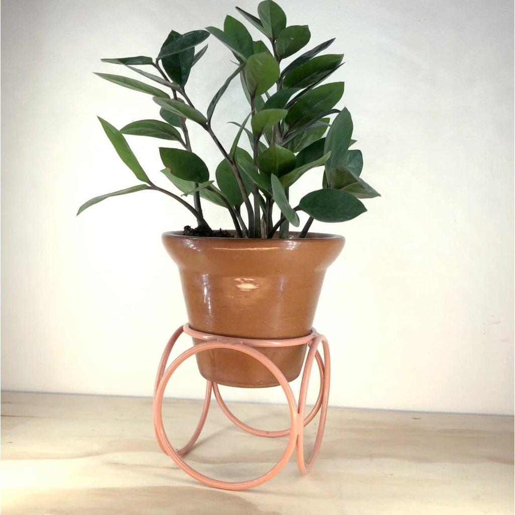 Faire Desktop Orbit Planter- Desert Rose