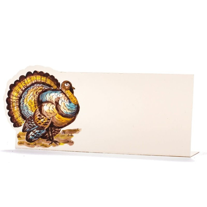 Hester and Cook Thanksgiving Turkey Place Card- Pack of 12