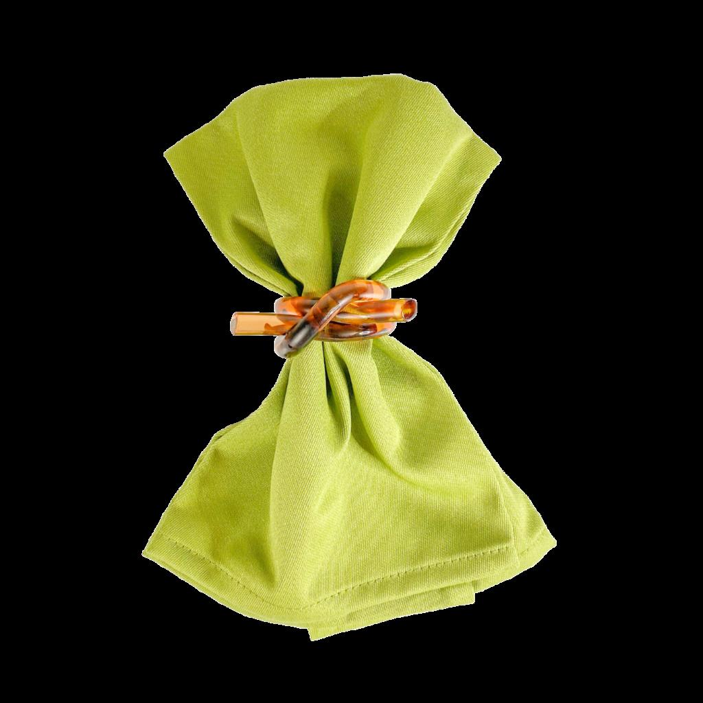 Garnier Thiebaut Napkins Plain Satin Confettis Mousse Green 18x18