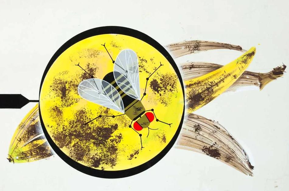 Charley Harper fruit fly on banana