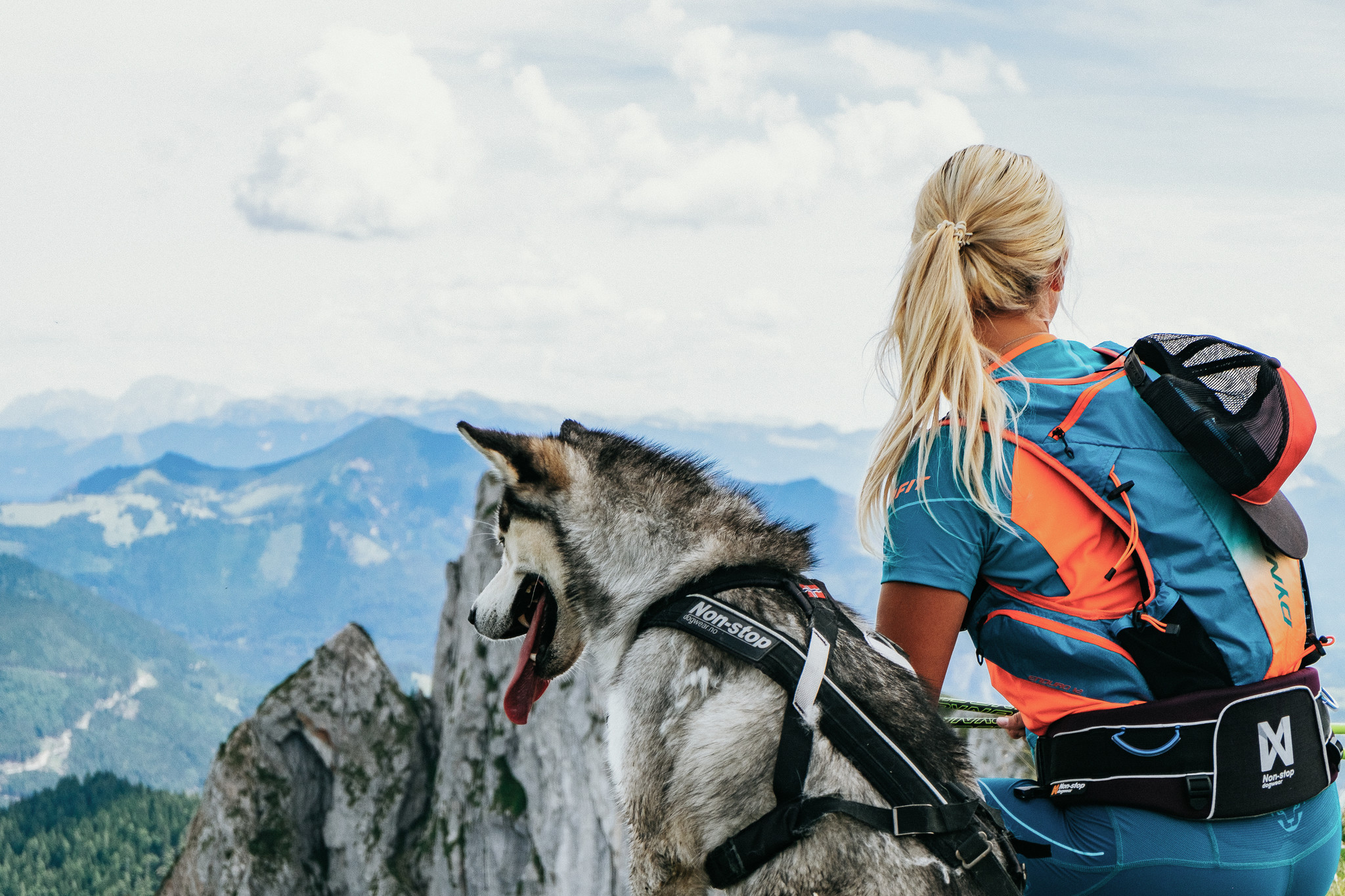 Dog Power Sports - Nonstop Dog Gear