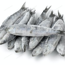 OC Raw Frozen OC Raw Sardines 1#
