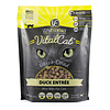 Vital Essentials Vital Essentials FD Duck Mini Nibs Cat 12oz