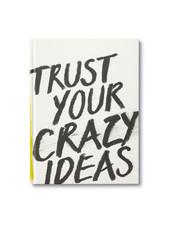 Compendium Trust Your Crazy Ideas