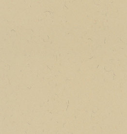 """Italy Annigoni Beige, 19.5"""" x 27.5"""", 250gsm"""
