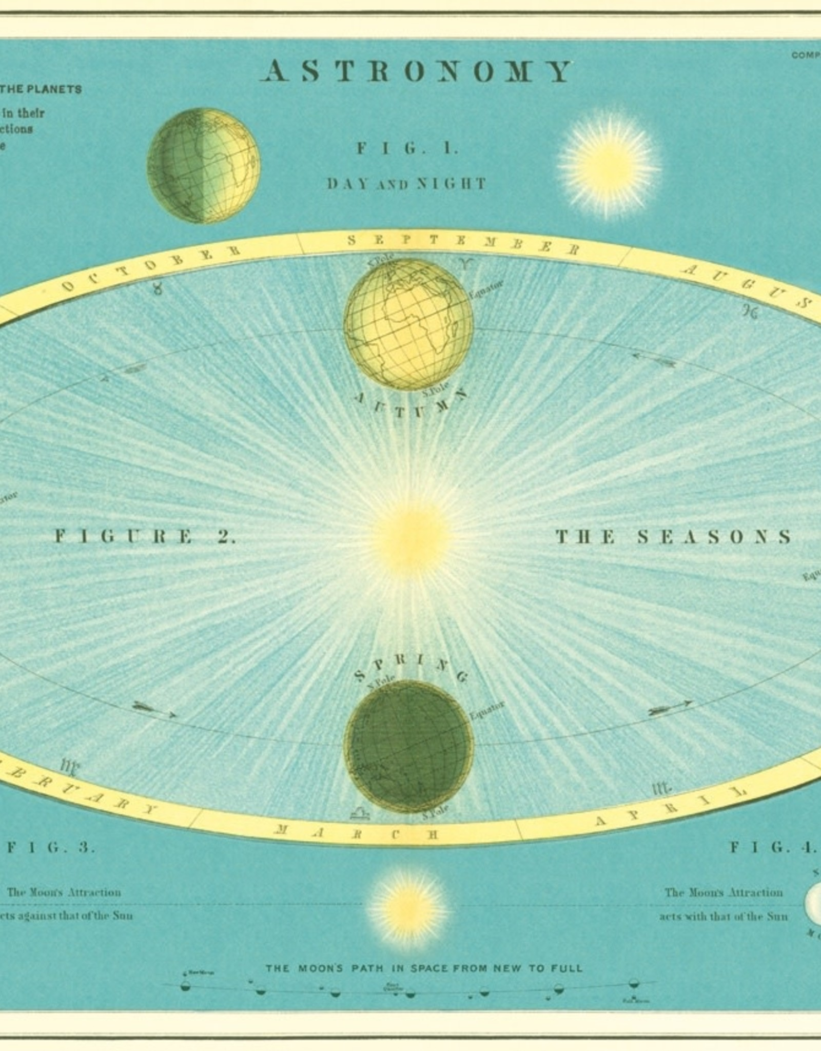 "Cavallini Astronomy, Cavallini Poster Print, 20"" x 28"""