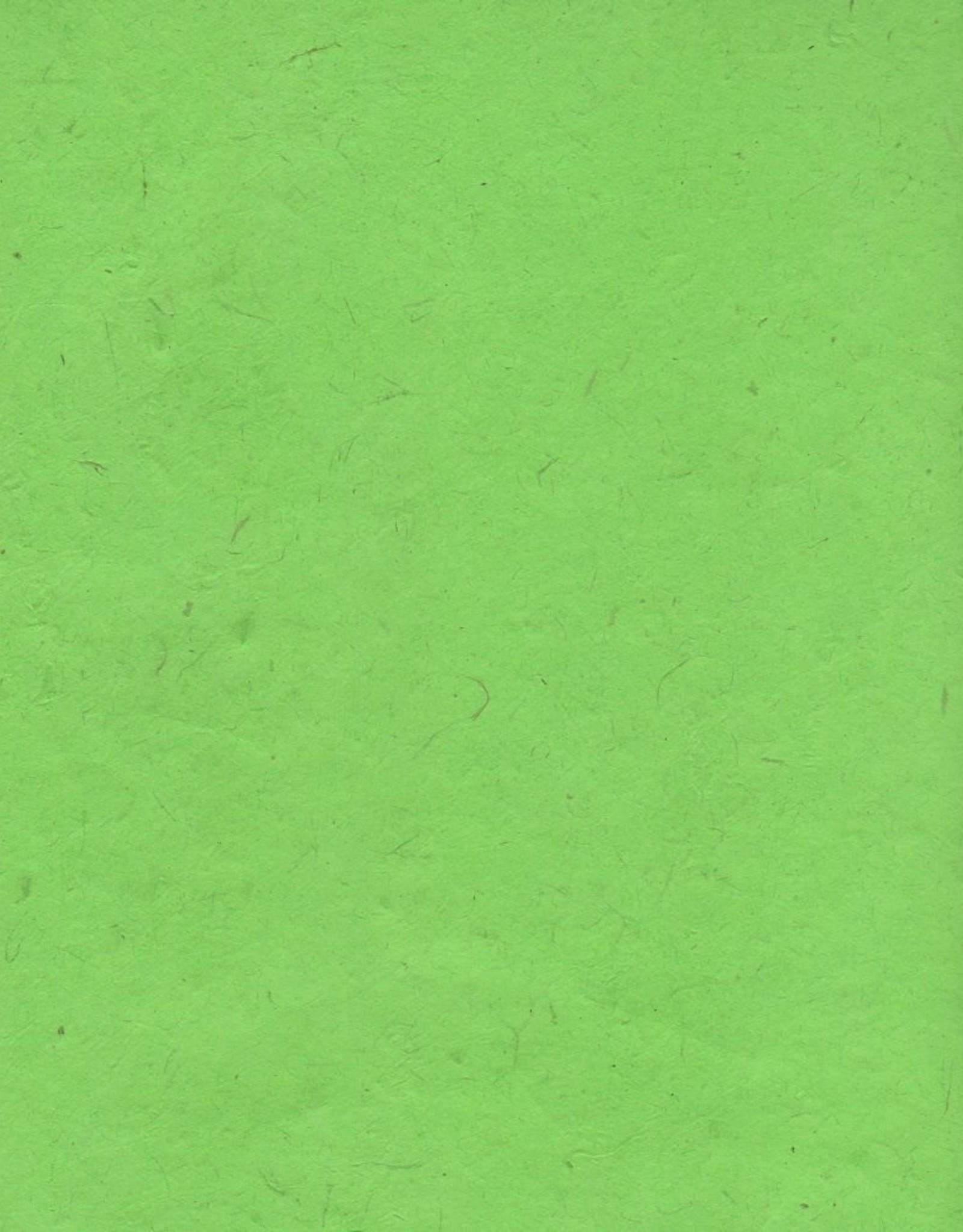 "Lokta Apple Green, 20"" x 30"", 60gsm"