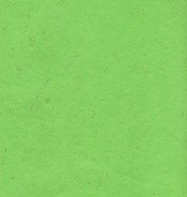 "Lokta Green Apple, 20"" x 30"", 60gsm"
