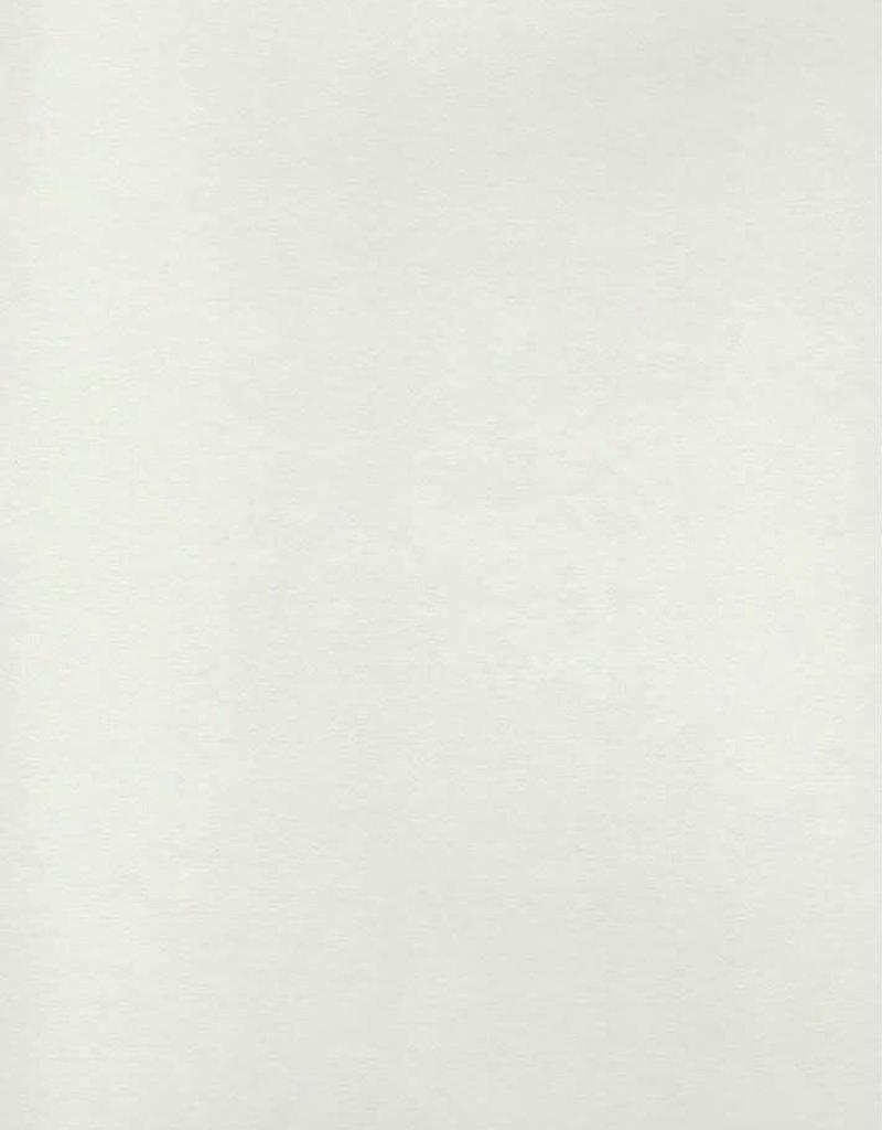 "Awagami Shin Inbe, Pearl, 21"" x 31"", 105gsm"