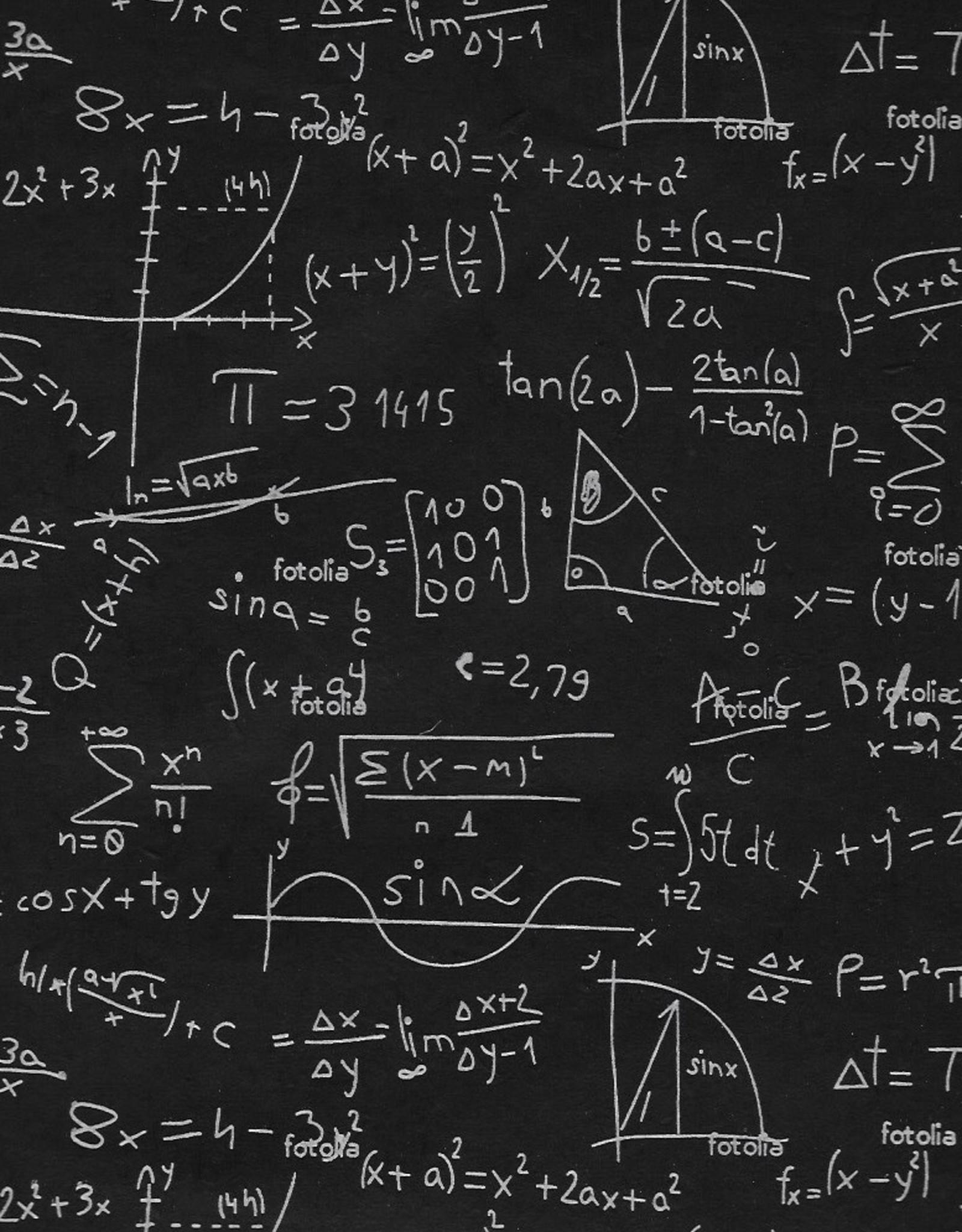 "Lokta Chalkboard Equations on Black, 22"" x 30"""