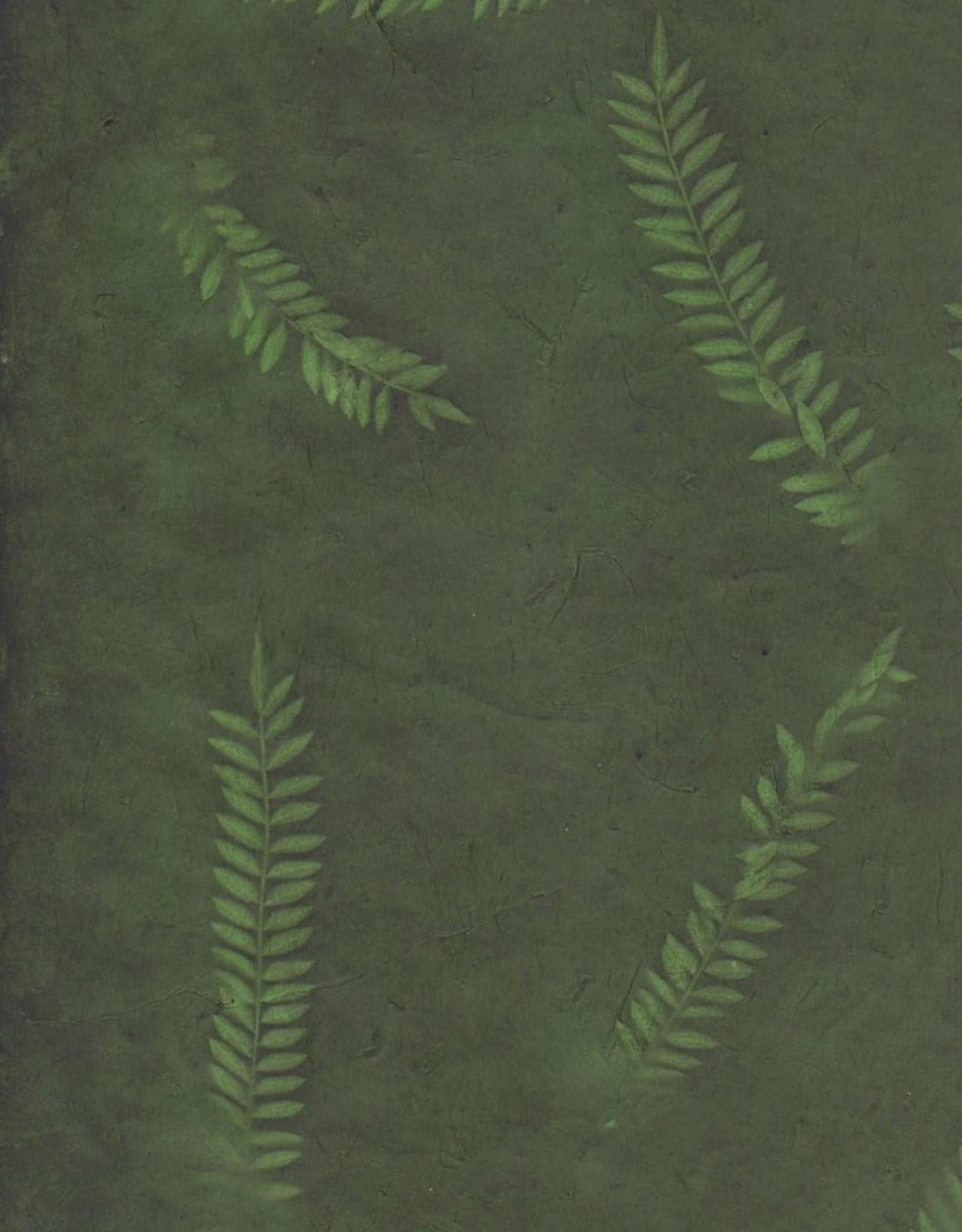 """Lokta Fern on Forest, 20"""" x 30"""""""