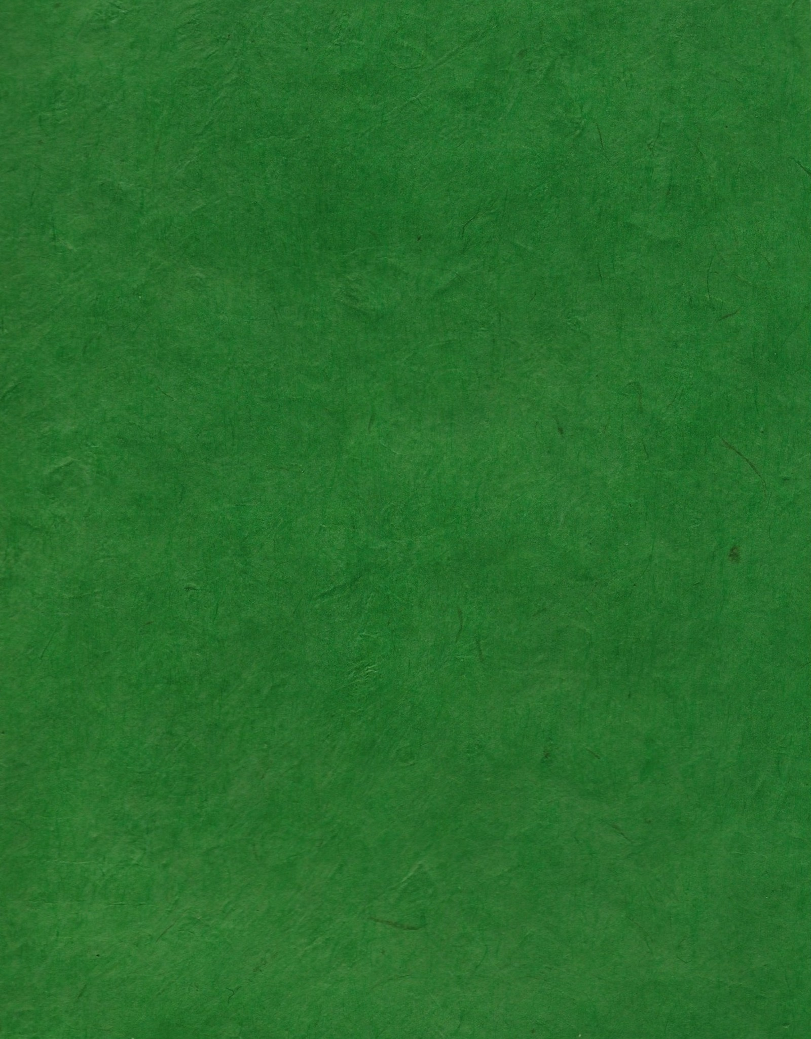 "Lokta Emerald, 20"" x 30"", 60gsm"