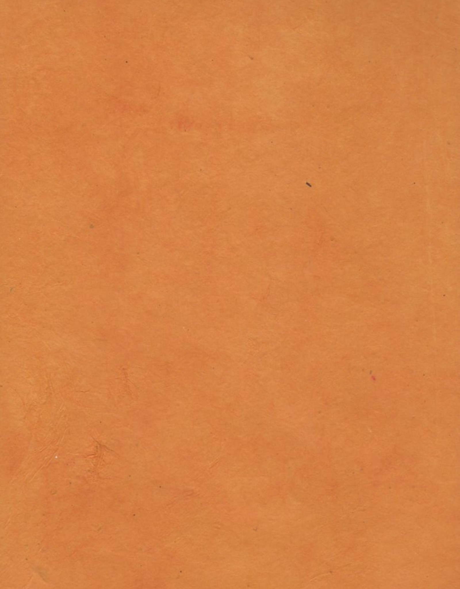 "Lokta Pumpkin, 20"" x 30"", 60gsm"